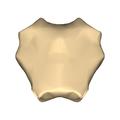 Manubrium - anterior view.png