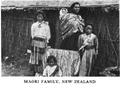 Maori Family, New Zealand.png