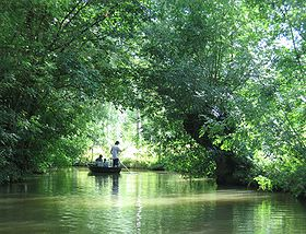 Image illustrative de l'article Marais poitevin