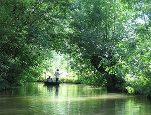 "Marais Poitevin - ""The Green Venice"": an inner canal seen from a flatboat."