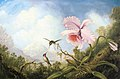 Martin Johnson Heade - Two Hummingbirds and an Orchid (15722365285).jpg