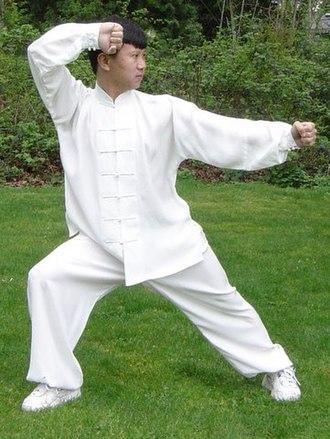 Yang Jun (martial artist) - Master Yang Jun performing Bend the Bow and Shoot the Tiger (弯弓射虎).