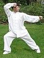 Master Yang Jun Bend The Bow Shoot The Tiger.jpg