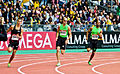 Meeting Areva 2011 400 m.jpg