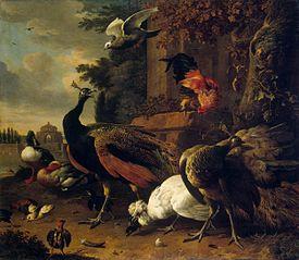 Birds in a Park