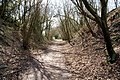 Meon Valley Trail - geograph.org.uk - 830494.jpg