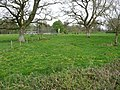 Mid Devon , Heathcoat Cricket Club and Trees - geograph.org.uk - 1261299.jpg