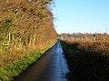Minor Road Near High Wardneuk - geograph.org.uk - 297975.jpg