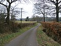 Minor road, near Churchinford - geograph.org.uk - 1183964.jpg