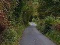 Minor road past Ty-newydd - geograph.org.uk - 2081147.jpg