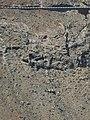 Mirador cerca de Betancuria - 05.JPG
