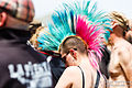 Mohawk pink and blue 2014.jpg