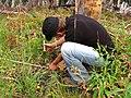 Monitoring vegetation in a recent burn (4428162714).jpg