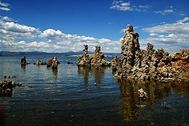 Zoutpilaren in Mono Lake.