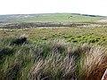 Moorland north of Moel Llyn - geograph.org.uk - 836800.jpg