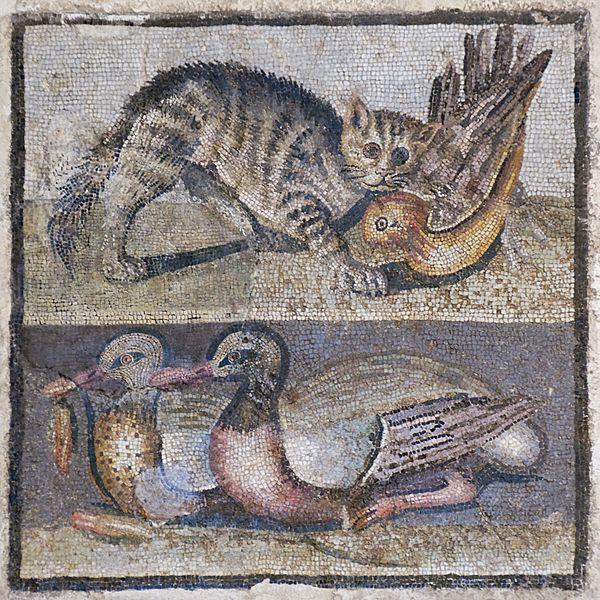 Archivo: Mosaic gato patos Massimo Inv124137.jpg