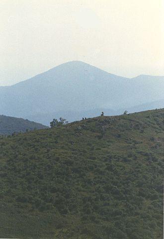 Mount Pisgah (mountain in North Carolina) - Image: Mount Pisgah from Black Balsam Knob 2007