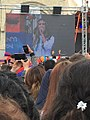 Mukuchyan performing Hayastan Jan (2018 Armenian protests) 1.jpg