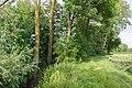 Munningen Laub Rohrach mit Baumbestand 019.jpg