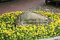 Munster (Örtze) - Ollershof 01 ies.jpg
