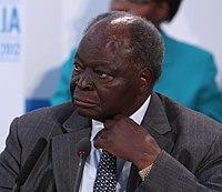 Mwai Kibaki (cropped).jpg