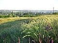 Mykhajliwske village - panoramio.jpg