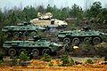 NATO demonstration 141113-A-WU248-225.jpg