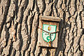 NDOÖ 499 Inzersdorf Quercus robur ND-Tafel.jpg