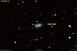 NGC 2405 DSS.jpg