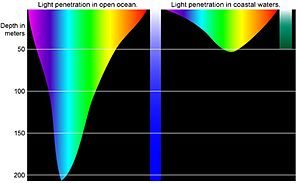 Diving physics - Comparison of penetration of light of different wavelengths in the open ocean and coastal waters