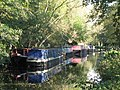 Narrowboats and houseboats on the Basingstoke Canal - geograph.org.uk - 1067988.jpg