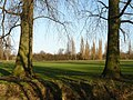Nature's goal posts Manor Park Toton by the River Erewash - geograph.org.uk - 1126939.jpg