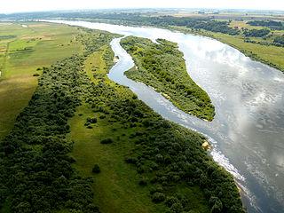 The river Nemunas at Molyne village