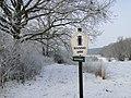 Neuenkirchen NSG Moorrinne von Klein Salitz bis zum Neuenkirchener See 2013-01-15 055.jpg