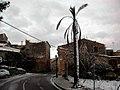 Nevada gener 2005.jpg