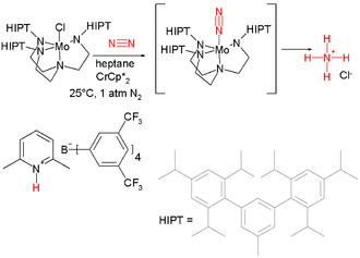 Nitrogen fixation - Image: Nitrogen Reduction
