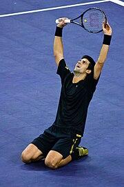 180px-Novak_Djokovic_during_the_2008_Tennis_Masters_Cup_final3.jpg