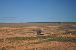 Nullabor Plains Australia - panoramio.jpg