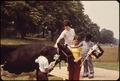 ON DAIRY DAY IN BROOKLYN'S PROSPECT PARK, SOME OF THE CHILDREN SAW A COW FOR THE FIRST TIME IN THEIR LIVES - NARA - 551732.tif