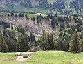 Oberstaufen, Germany - panoramio (7).jpg