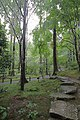 Ohararaikoincho, Sakyo Ward, Kyoto, Kyoto Prefecture 601-1242, Japan - panoramio (7).jpg