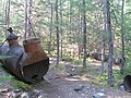 Old Locomotive boiler, Chilkoot Trail -b.jpg
