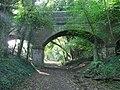 Old bridge - geograph.org.uk - 998696.jpg