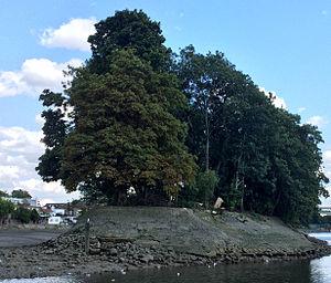 Oliver's Island - Oliver's Island