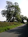 On the Pocklington to Burnby road - geograph.org.uk - 238153.jpg