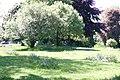 Open Grass Area (1) - geograph.org.uk - 2389837.jpg