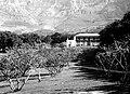 Oranjezicht Estate.jpg