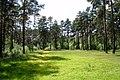 Orekhovo-Zuyevo, Moscow Oblast, Russia - panoramio.jpg