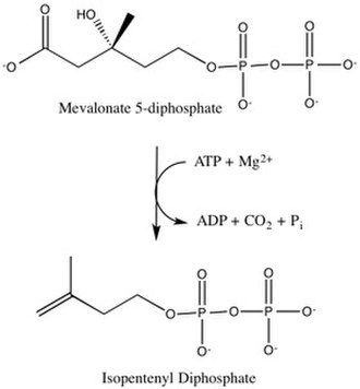 Diphosphomevalonate decarboxylase - Image: Overall reaction catalyzed by mevalonate diphosphate decarboxylase