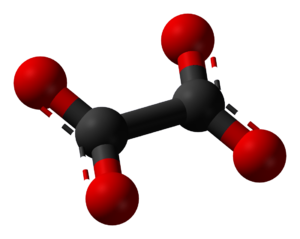 Oxalate - A ball-and-stick model of oxalate